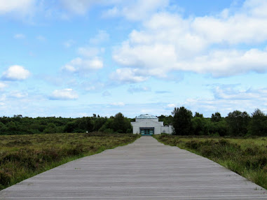 Things to do near Athlone: Hike over Corlea Trackway