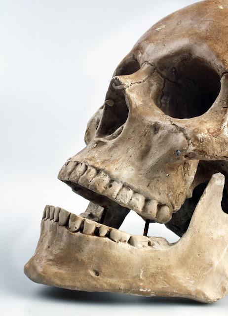 Huesos humanos, a la venta por 20 pesos