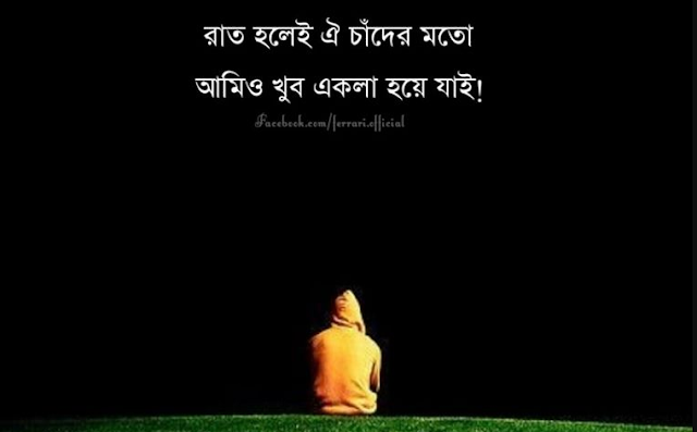 Bengali Romantic Quotes And Best 100+ Bangla Quotes Romantic  With Picture