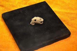 ceramiczna (?) głowa smoka (?) z Kałdusa