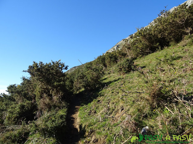 Ruta al Cerro Llabres: De la casa del Cura a la cima