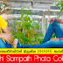 Buddhi Sampath Photo Collection