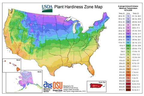 Choose trees plants and shrubs using the USDA Plant Hardiness Zone Map