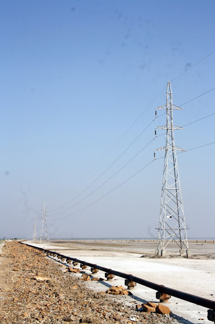 Rann of Kutch, White Desert, Gujarat, white, beautiful, salt marsh, electric grid, entrance, highway, bhuj