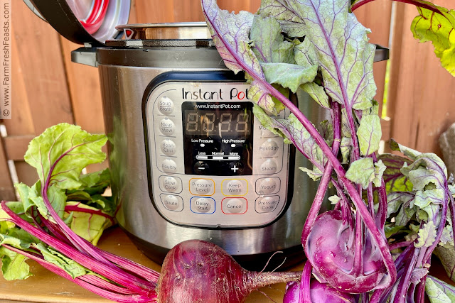 image of instant pot with bunch of beets and purple kohlrabi