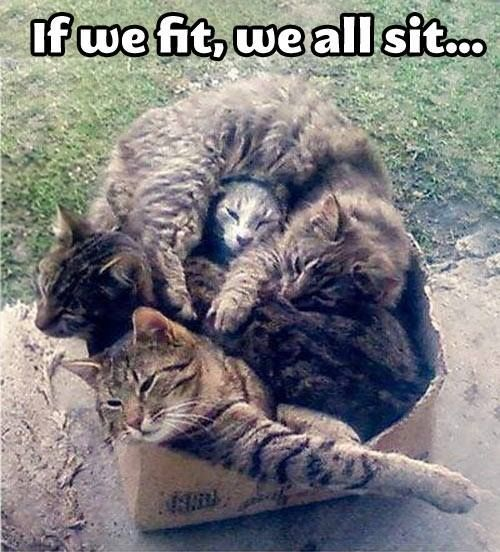 If we fit, we all sit