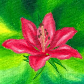 floral merch