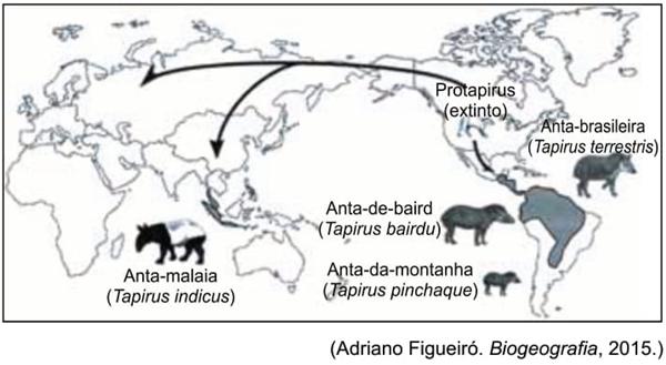 UNESP 2021: A distribuição do gênero Tapirus no tempo e no espaço indica que