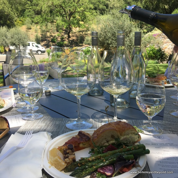 al fresco tasting at Thomas George Estates in Healdsburg, California
