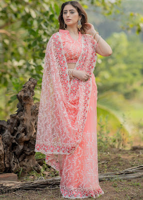 Peach Embroidered Heavy Border Saree With Blouse indian party wear