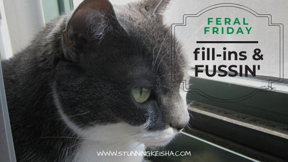 Feral Friday Fill-ins & Fussin'