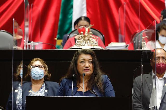 Necesario, dotar a gobiernos de herramientas y planteamientos para proteger a la población ante desastres: María Chávez