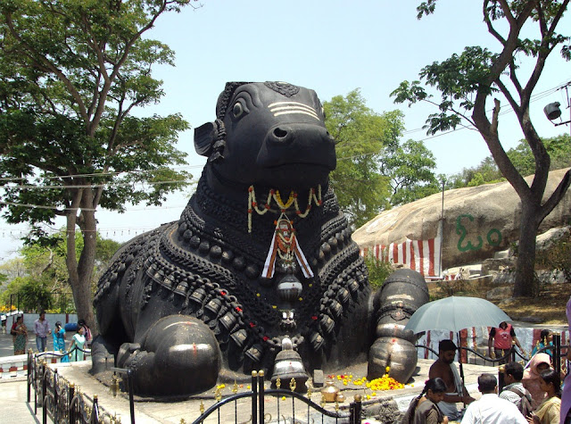 शिवपुराण: नंदी बैल,nandi ki mahima,nandi ki utpatti kaise hui,lord shiva and nandi story,why nandi sit in front of lord shiva