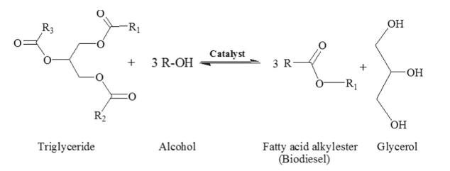 Fórmula de la transesterificación de triglicéridos en presencia de alcohol en un medio catalizado