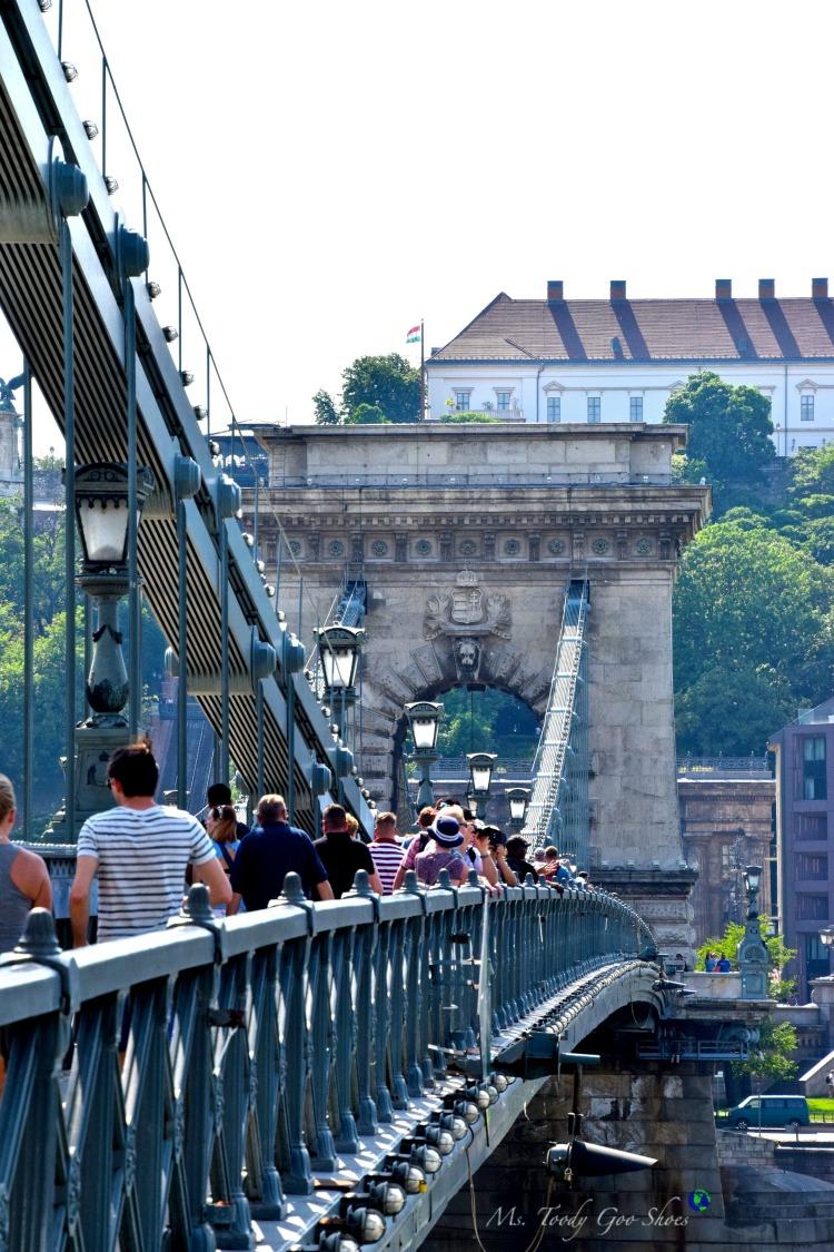 Chain Bridge in Budapest  | Ms. Toody Goo Shoes #budapest #danuberivercruise #hungary