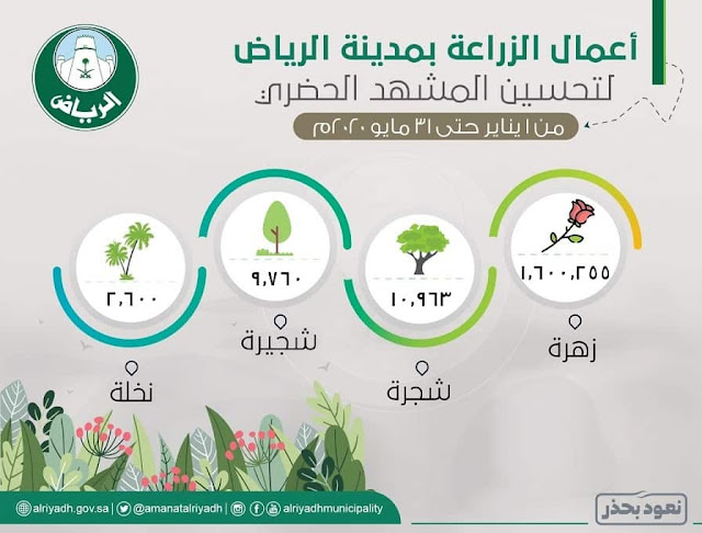 Green Riyadh Project to plant 7.5 million trees in Riyadh - Saudi-Expatriates.com
