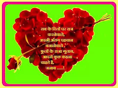 फूलों के राजा गुलाब | King of flowers roses
