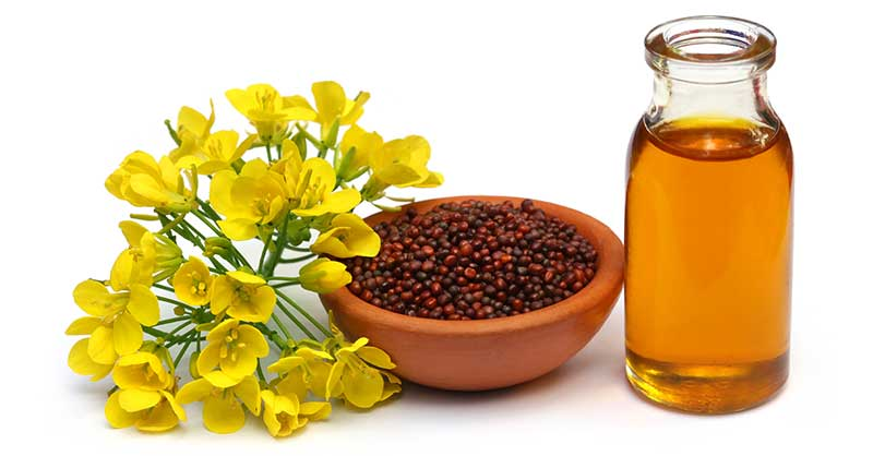 ​How Mustard Oil Helps In Improving Our Health