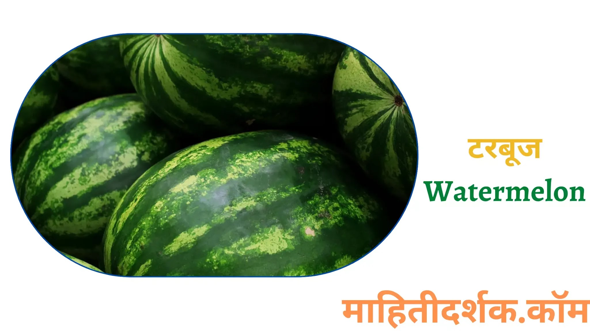Fruit Name in Marathi