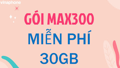 Gói MAX300 Vinaphone
