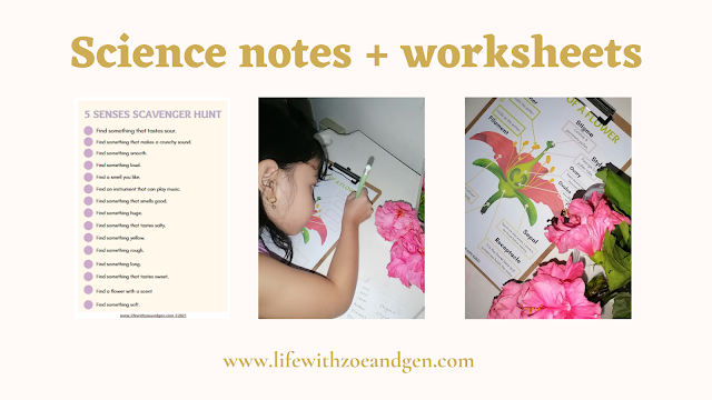 Free science resources, notes and worksheets for grade 1. Download now. Mommy blogger ph. Life with ZG l parts of a flower l 5 senses