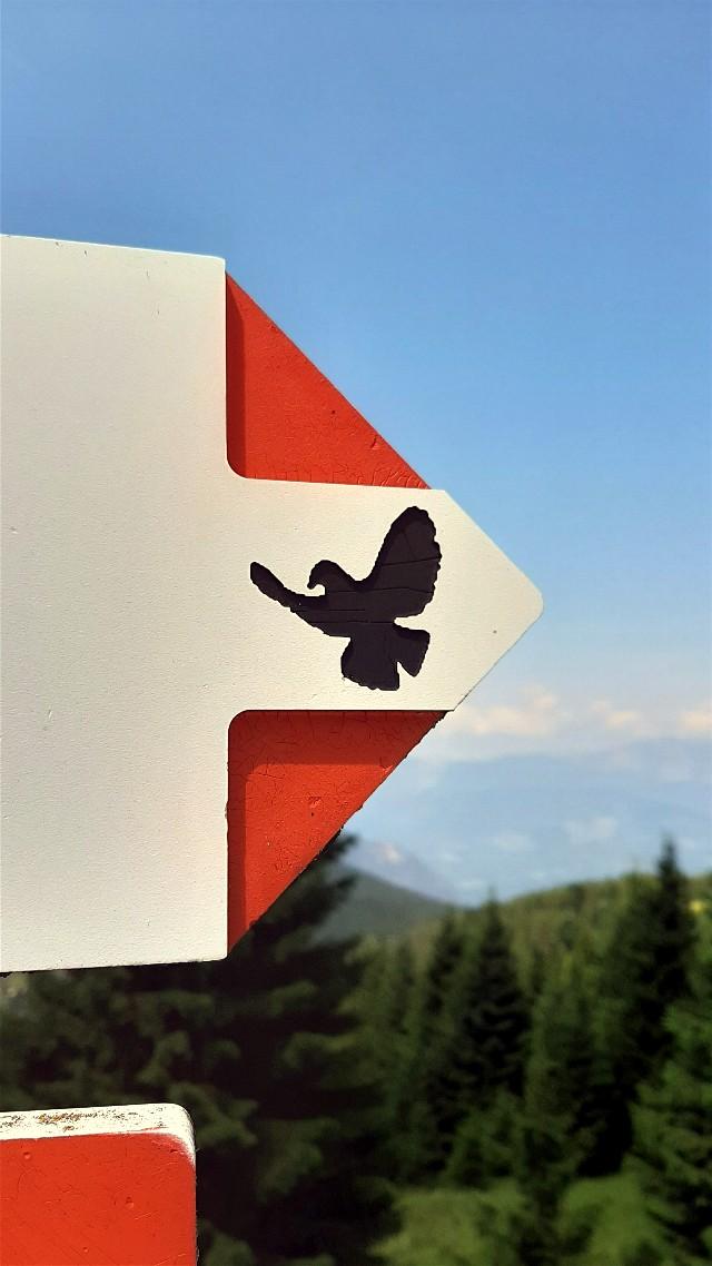 sentiero della pace