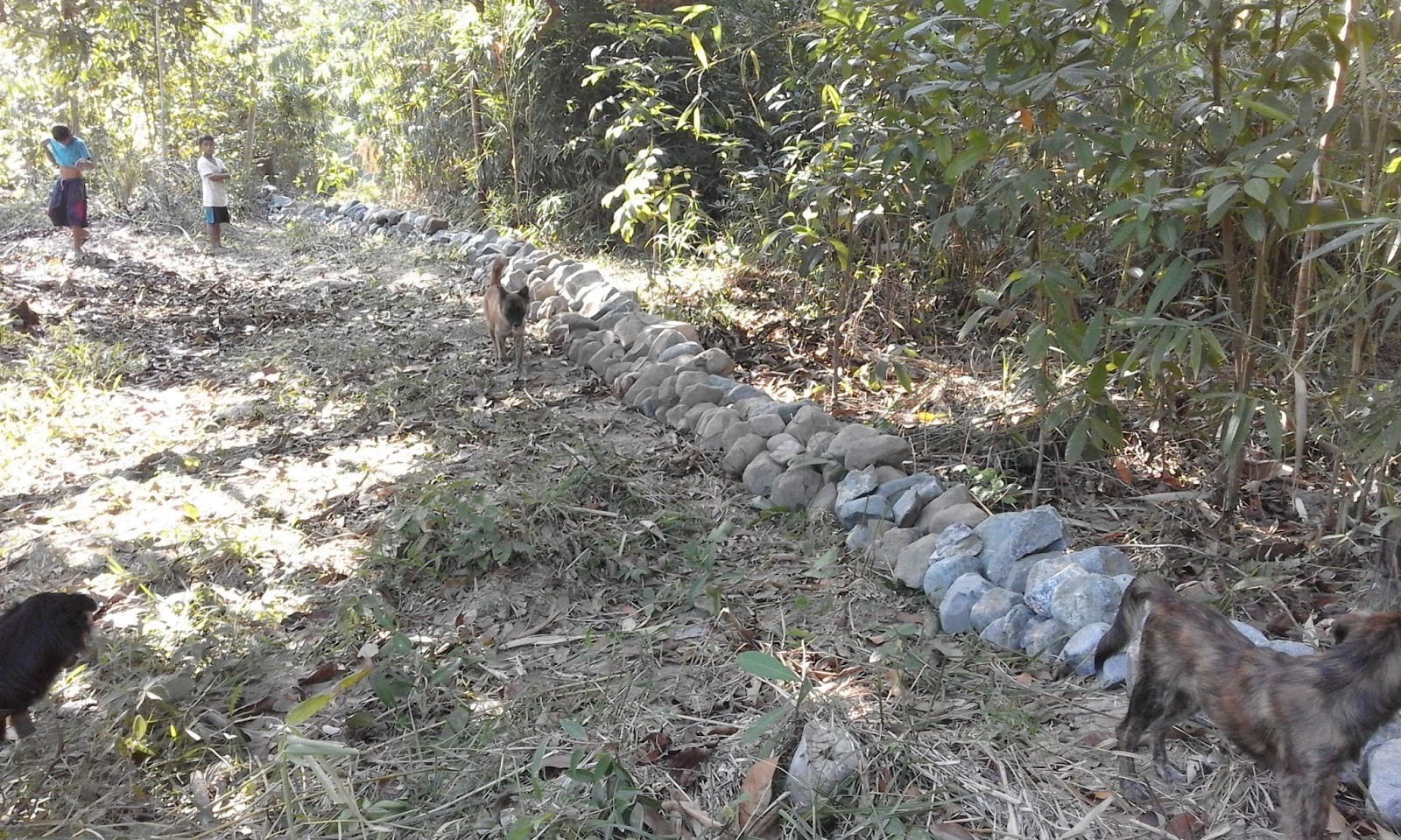 Sustainable development creekside stone barriers for Stone creek development
