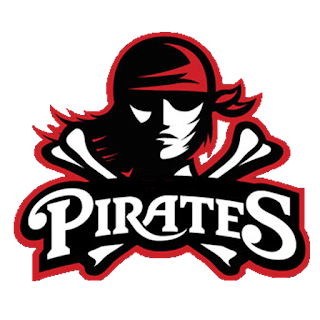 Logo Dream League Soccer 17 pirates