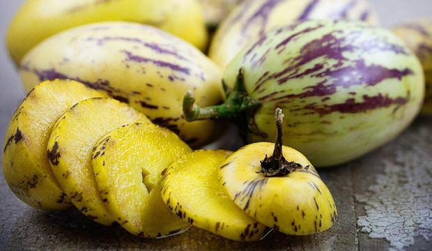 Pepino meyvesi nedir? Pepinonun faydaları nelerdir? nasıl yetiştirilir? pepino çeşitleri.