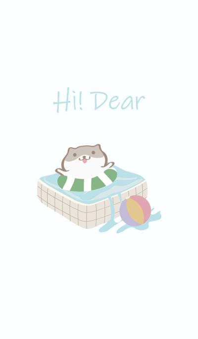 Hamster swimming pool