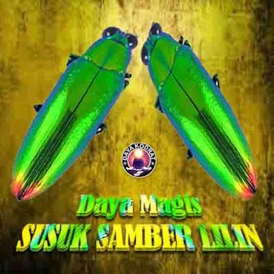 DAYA MAGIS SUSUK SAMBER LILIN