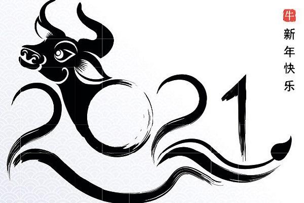 Что предстоит пережить Знакам Зодиака в 2021 году