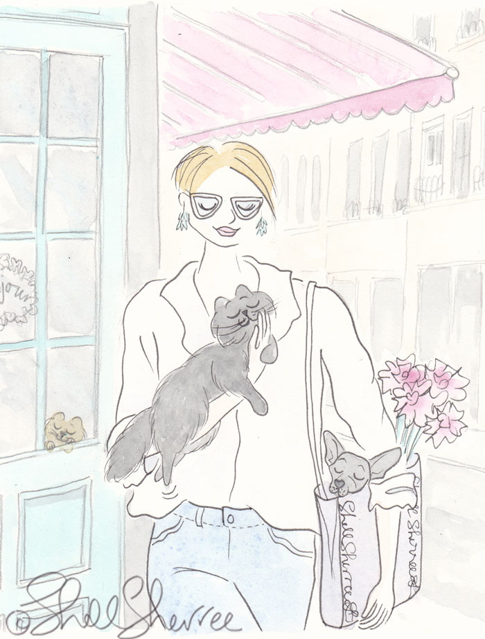 Casual Wander with Pink Awning, Black Cat, Toting Chihuahua fashion illustration  © Shell Sherree all rights reserved