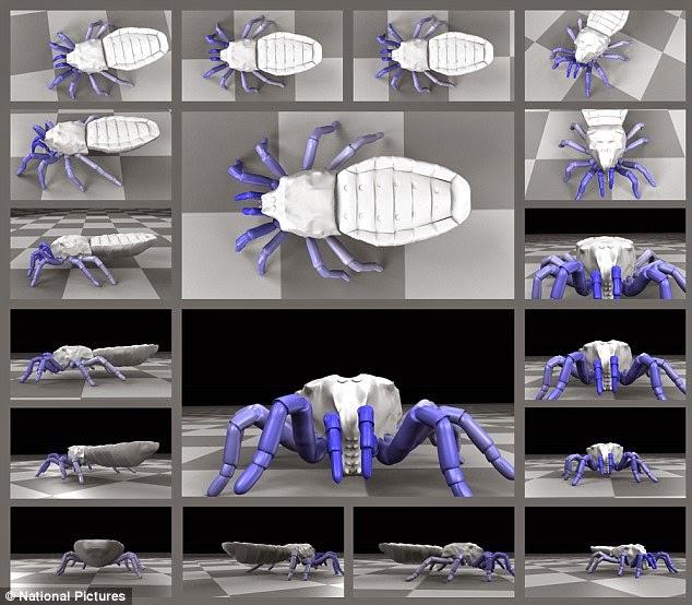ancient spiders animatedfilmreviews.filminspector.com
