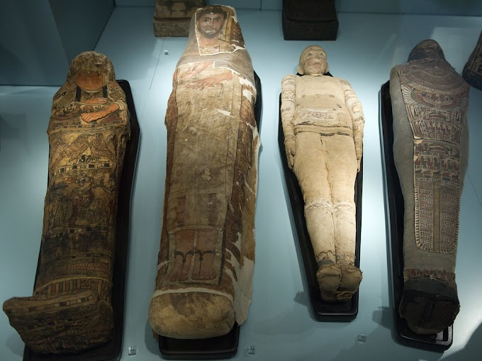 Egyptian Mummy facts