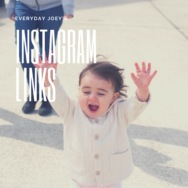 Instagram Links - Everyday Joey