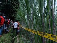 Pamit Cari Rumput, Petani Sambit Ponorogo Meninggal di Tengah Ladang