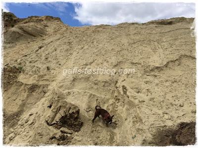 Klettern am Sandberg
