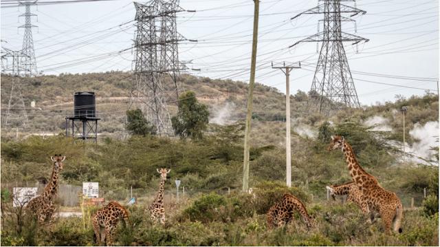 El Huracán del progreso en Kenia