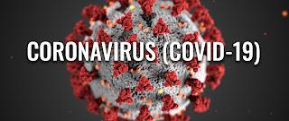 Apa Itu Covid 19 (Novel Coronavirus)