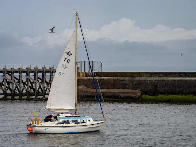 Photo of Skipsea Witch leaving Maryport Marina for a sail on the Solway Firth
