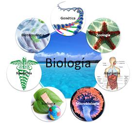 Diccionario De Biologia Qué Es Biologia