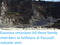 http://sciencythoughts.blogspot.co.uk/2017/09/gaseous-emissions-kill-three-family.html