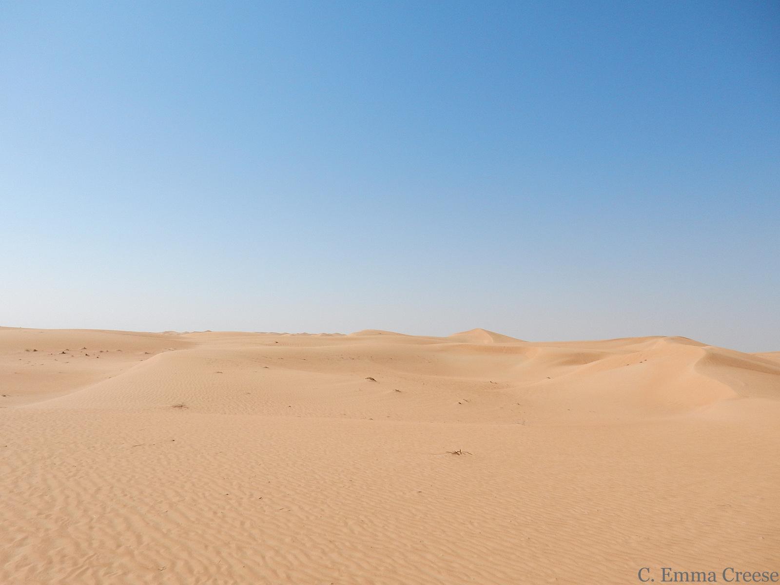 What to do in Dubai desert safari