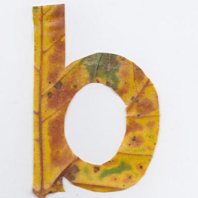 Letra B recortada en una hoja de arbol
