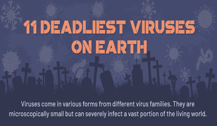 11 Deadliest Viruses On Earth #infographic