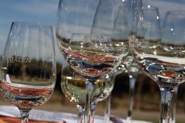 ruca malen winery