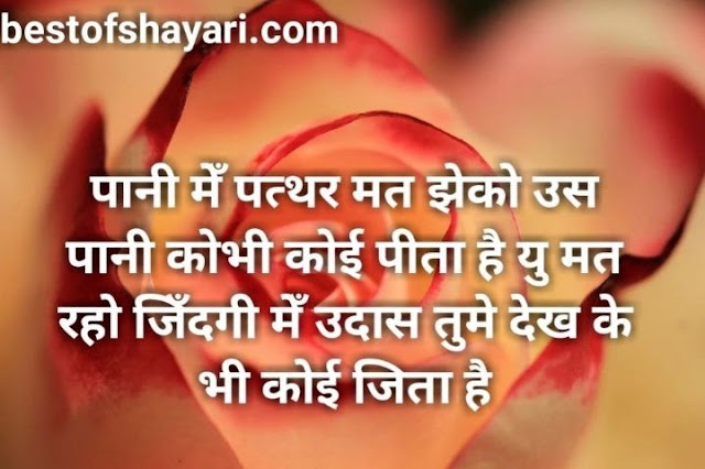 hindi shayari love romantic