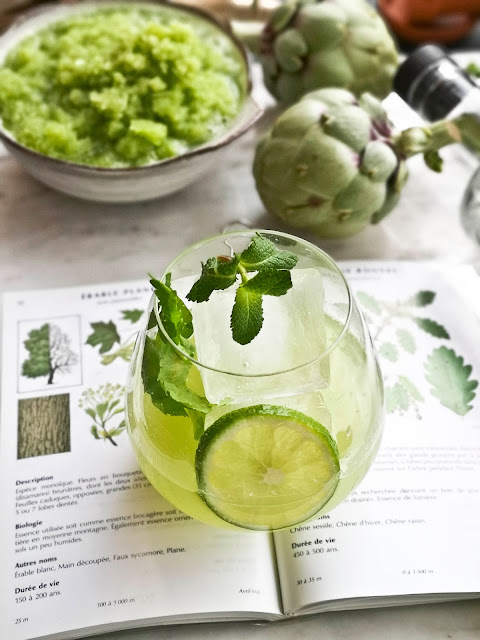 printemps,gin-tonic,gin-tonic-du-jardinier,madame-gin,montreal,gin-bechwan