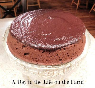 Malted Chocolate Cake with Baileys Irish Cream Ganache
